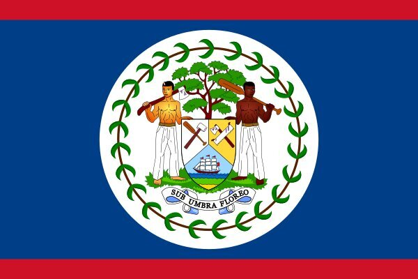 Roundel of Belize Defence Force Air Wing of Belize