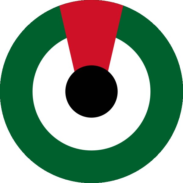 Roundel of United Arab Emirates Air Force.