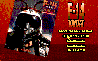 F-14 Tomcat by Activision